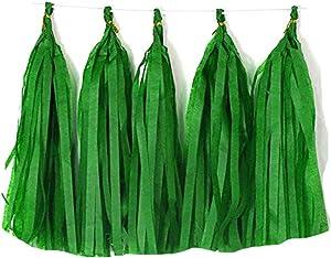 Tissue Paper Tassels Paper Tassels Garland Banner Table Decor Party Tassels Banner Wedding Birthday Baby Shower Nursey Party Decorations Supplies (20, Green)