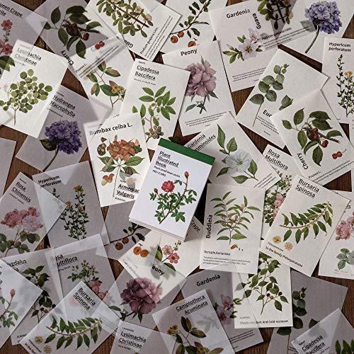 80 Sheets/pack Vintage Sticker Set Nature Plant Mushroom Herbal Leaf Decorative Label For Scrapbooking Diary Book Album Planner