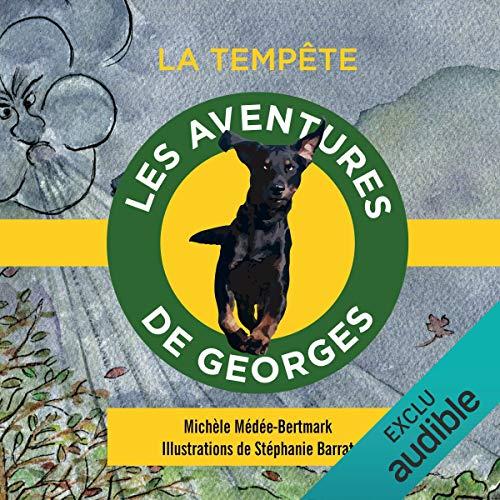 La tempête (Les aventures de Georges) cover art