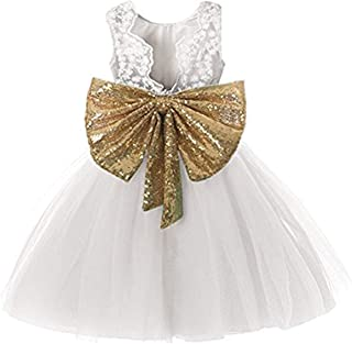 Toddler/Little/Baby Girls Sequin Tulle Embroidered Elegant Tutu Backless Dresses