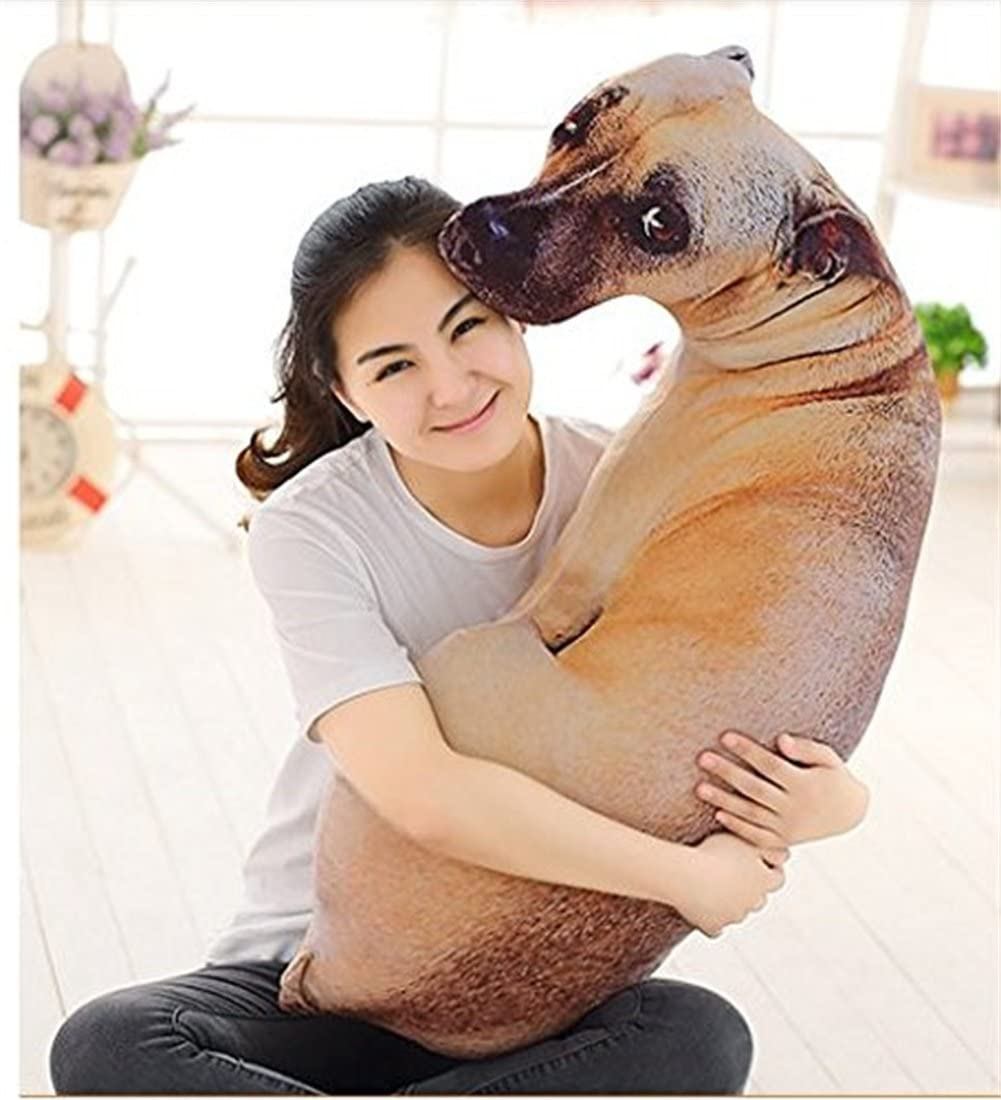 Tiancay Hundeleine PU-Leder-Runde Seil Zugkraftgurt Goldene Medium Teddy Hund Unterhaltung Dog Rope Set