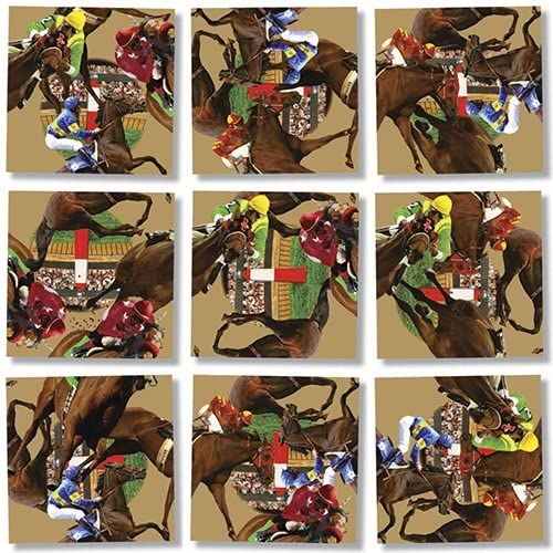 Horse Racing Puzzle by B.Dazzle