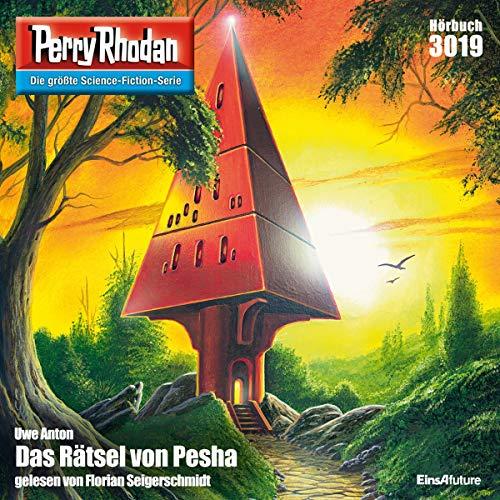 Couverture de Das Rätsel von Pesha