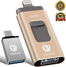 iPhone Flash Drive for iPhone 256GB USB Flash Drive Type...