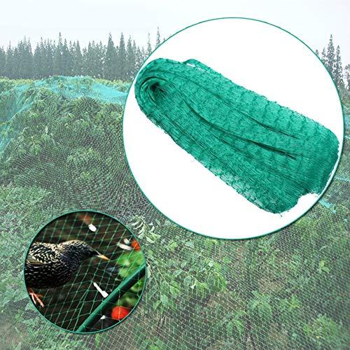 Brussels Filet de jardin réutilisable en nylon anti-oiseaux pour plantes, fruits, légumes, bassins de poissons, couvertures, 4 x 10 m