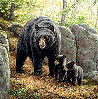 DIY 5D Diamond Painting by Number Kit for Adult, Full Round Resin Beads Drill Diamond Embroidery Dotz Kit Home Wall Decor,30x40cm,Forest Black Bear Mother Baby
