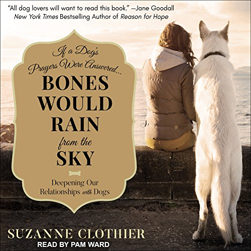 Bones Would Rain from the Sky audiobook cover art