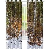 cortinas de bloqueo de luz, Tigre de Bengala en la selva nevada Caza y crucero para presa Peludo Majestic Mammal, W52 x L108 Sala de estar Dormitorio Cortinas de ventana, Naranja Verde