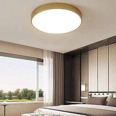 WYNA Luz de Techo LED Redonda Dorada, lámpara de Techo empotrada en el Interior, lámpara Minimalista Europea para Dormitorio Cocina Pasillo Oficina Comedor Escalera,WhiteLight,23cm: Amazon.es: Hogar