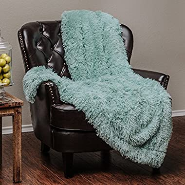 Chanasya Super Soft Shaggy Chick Longfur Throw Blanket - Snuggly Fuzzy Faux Fur Lightweight Warm Elegant Cozy Sherpa - For Couch Bed Chair Sofa Daybed - 50 x 65  - (Machine Washable) - Turquoise