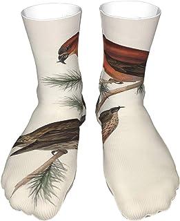 popluck, Calcetines para adultos, calcetines largos de algodón, calcetines gruesos de tacón negro, calcetines cálidos, unisex, 40 cm, John Gould Los pájaros de Europa 1837 V1 V5 202 Common Crossbill