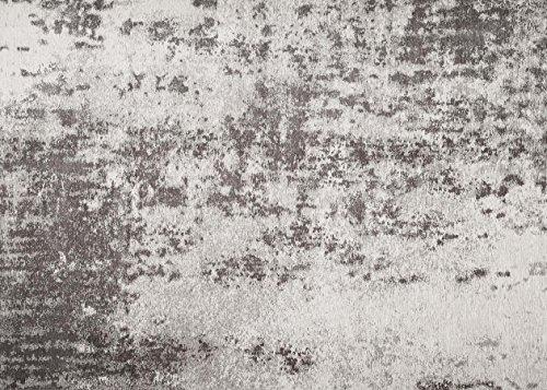 Zone Tapis de sol facile à nettoyer Bonne qualité Tapis Lyon Gris 160x 230