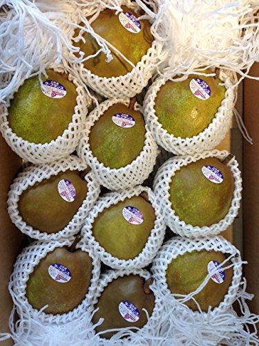 フルーツひろは 山形産 ラフランス 1箱 10玉