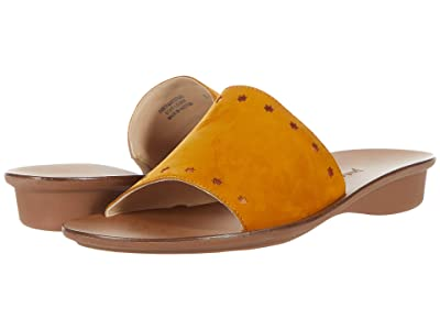 Paul Green Crosby Slide (Curry Orange Combo) Women