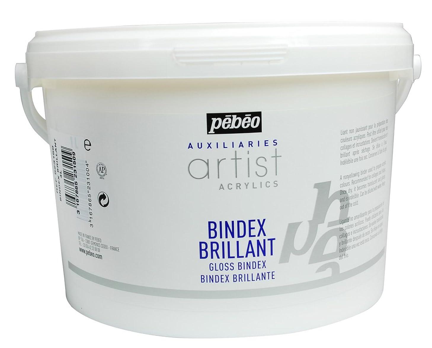 PEBEO 523150 4 Litre Gloss Bindex, Transparent