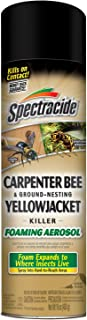 Spectracide 53371 Bee and Ground Yellow Jacket, 16-Ounce Carpenter Bee & Ground-Nesting Yellowjacket Killer Foaming Aerosol, Case Pack of 1