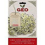 Geo Ajo Oriental Semillas para germinar, Marrón, 12.7x0.7x20 cm