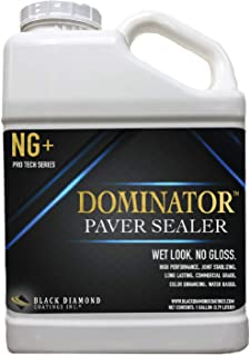 1 Gallon DOMINATOR NG+ Matte Wet Look Paver Sealer and Decorative Concrete – Solvent Free, Twice The Coverage Rate (up to 400 sq ft)