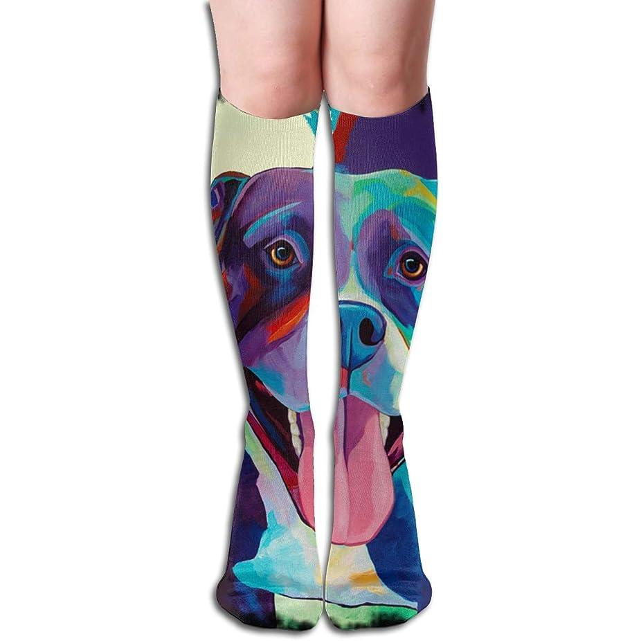 電報分散作成するQrriyレディースピットブルポップアートソフトクリスマス膝高ストッキング靴下、クリスマス楽しいカラフルな靴下ソックス