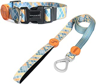 Heads Up For Tails Colour Chaser Dog Collar and Leash (Medium)