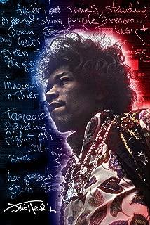 Pyramid America Jimi Hendrix Electric Ladyland Music Cool Wall Decor Art Print Poster 24x36