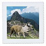 3dRose QS 87068Stange/Strebe 3Peru, Machu Picchu, Lama