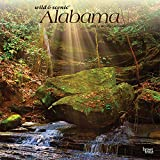 Alabama Wild & Scenic 2022 12 x 12 Inch Monthly Square Wall Calendar, USA United States of America Southeast State Nature