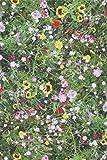 Provencestoffe.com Meterware, Stoff, Baumwolle, Frühling,