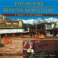 A Tribute to the Karmapa