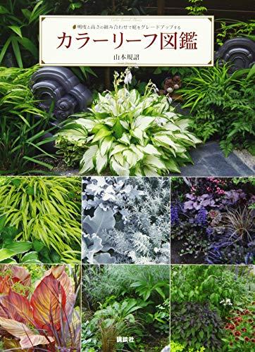 カラーリーフ図鑑 明度と高さの組み合わせで庭をグレードアップするの詳細を見る