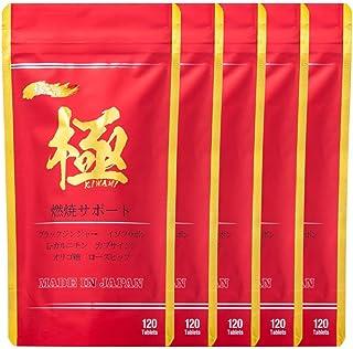 【公式販売店】燃焼系サプリ 5袋セット 極ボディ 燃焼系サポート 運動で燃やす燃焼系 サプリメント Lカルニチン ビタミン カプサイシン ブラックジンジャー