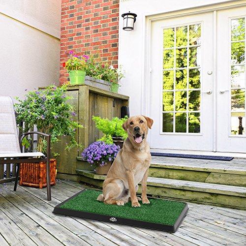 PETMAKERThe Indoor Restroom Puppy Potty Trainer for Pets, Medium, Green (80-ST2025)