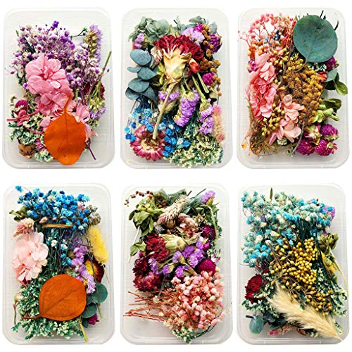 YU-NIYUT 1Box Random Style Delivery Crystal Epoxy Filler Dry Flower Mixed Nail Stickers Decorations for DIY Craft Resin Jewelry Making Art Craft