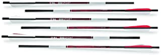 Bloodsport Witness Crossbow Bolt/Arrow, 6 Pack