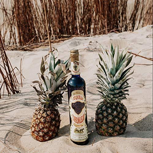 Corralejo Tequila Reposado, 100% Agave 6 Monate in französischen Limousin-Eichenfässern gelagert (38% Vol 1 x 700ml) - 6