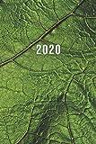 2020: ENE - DIC Planificador Semanal | 1 Semana en 2 Páginas | Agenda Semana Vista | Calendario Organizador | A5 Planner | Hoja Verde