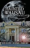 Haunted Wausau: The Ghostly History of Big Bull Falls