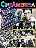 Why Elvis?