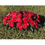 Red-Poinsettia-Cemetery-Headstone-Arrangement