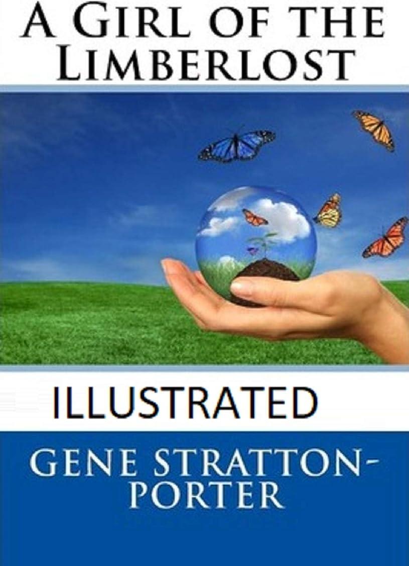妥協スポーツをする続編A Girl of the Limberlost Illustrated (English Edition)