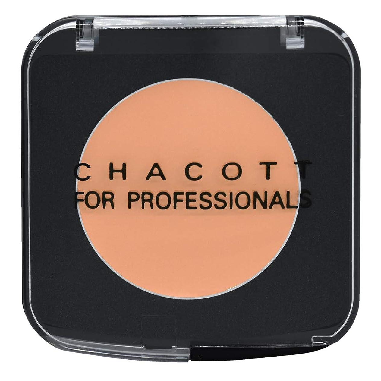 樫の木真鍮水星CHACOTT<チャコット> ステージファンデーション 401