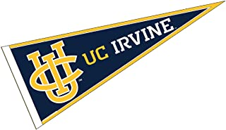 College Flags and Banners Co. UC Irvine Pennant Full Size Felt