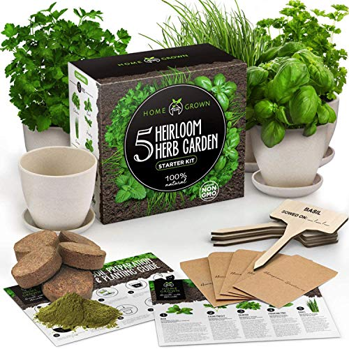 Indoor Herb Garden Starter Kit - 5 Herb Seeds Gardening Kit with Bamboo Planting Pots & Potting Soil - Heirloom & Non GMO - DIY Home Seed Starter Grow Plant Kit - Basil, Mint, Cilantro, Chives Seeds