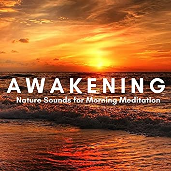 Awakening: Relaxation Music for Power Yoga & Pilates, Mindfulness Meditation with Nature Sounds for Morning Meditation