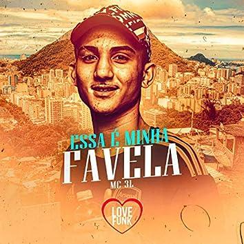 Essa É Minha Favela