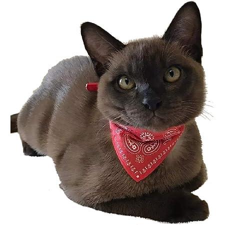 Plaid Dreiecktuch Dreiecktuchkrawatte Stil f/ür Hunde Kleines Haustier Outfits Zubeh/ör Katzen Hanko S/ü/ßes Leder Haustier Halsband