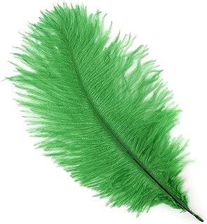 Best diy feather quill pen Reviews