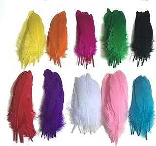Colorful Goose Feathers 100pcs/pack/(10pcs X10colors) (6--8 inch)