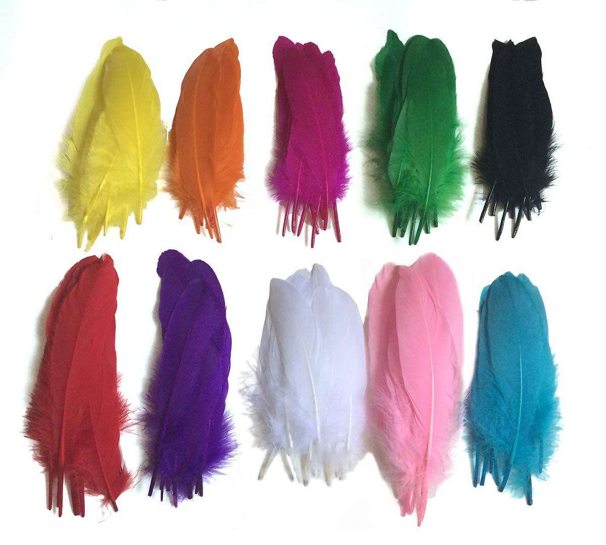 Colorful Goose Feathers 100pcs X10colors