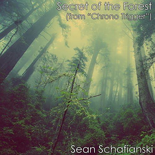 Sean Schafianski